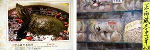 soupe de tortue et nids d'hirondelle